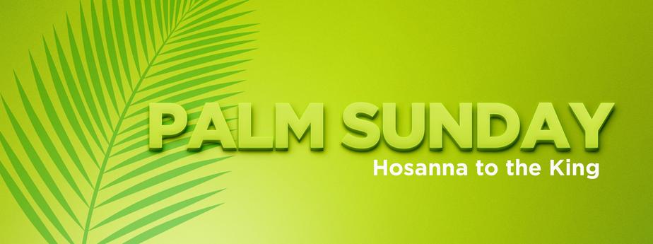 palmsunderslide