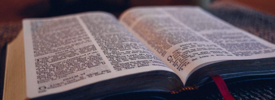 Copy of biblestudy