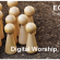 worship17012021.jpg